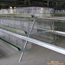 广西兴丰塑料鸡笼