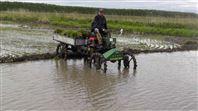 农作物运苗机植保机械