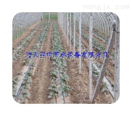 温室大棚滴灌设备丨滴灌管生产线