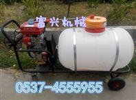 小型拉杆式汽油打药机  背负式喷雾器 打药机型号
