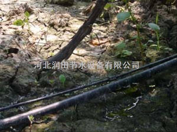 河南许昌市大棚膜下微喷|滴灌带价格