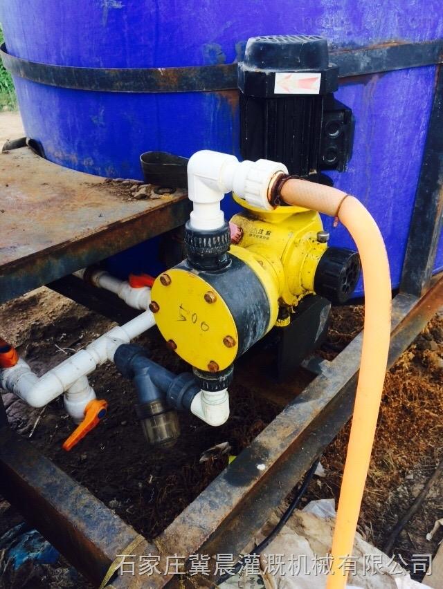 F300-施肥泵