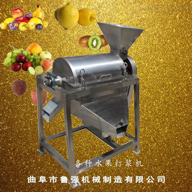 山东厂家生产促销不锈钢打浆机 果蔬不锈钢打浆机