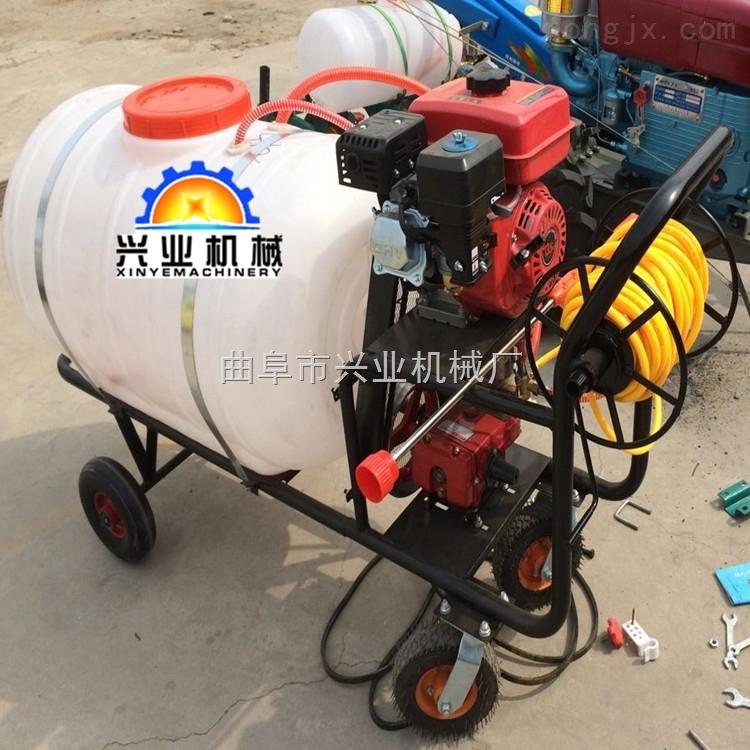 厂家直销高压喷雾器农用农田打药机手推式300L喷雾器