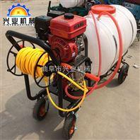 轻便手推汽油喷雾机 高压果园打药机 家用电动喷雾器