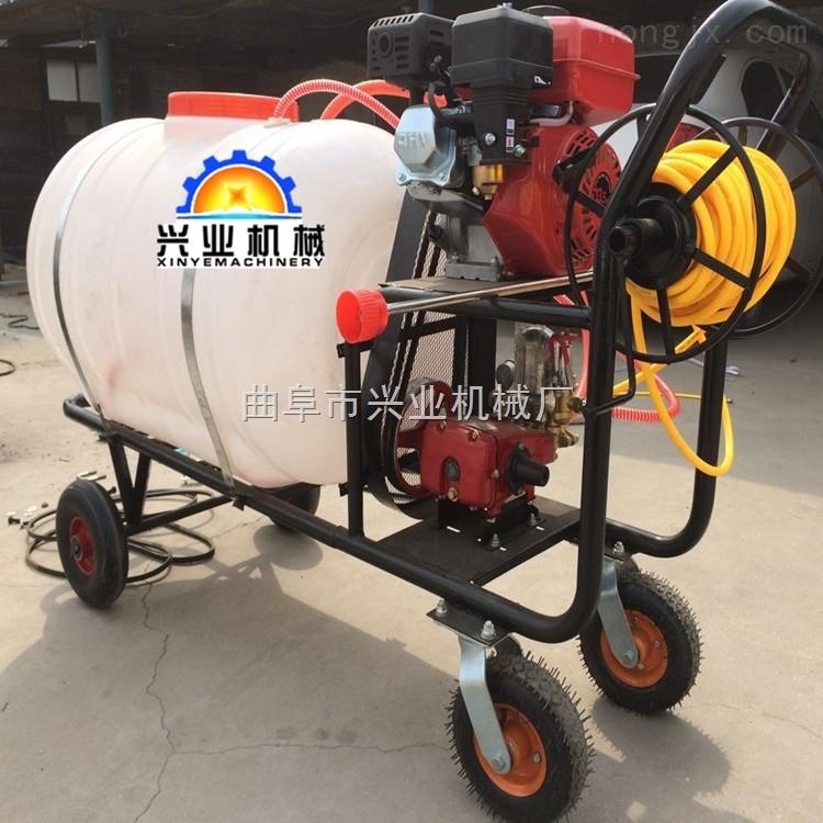 自走式葡萄打药机水稻喷药机家庭用手推车式打药机