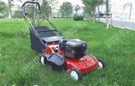 手推自走草坪机 草坪修剪机 汽油草坪修剪机规格