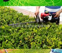 YYS-LLJ-汽油綠籬機價格