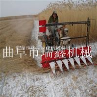 皇竹草收割机多功能小型辣椒割晒机 油菜牧草收割机