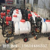自走式果树喷雾器 移动式高压喷雾机 果园喷雾打药车