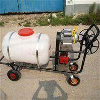 手推式汽油打药机自走式远射程打药机 玉米田地农药喷雾机