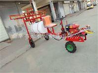 湖南水稻田专用远程喷药打药机 大棚葡萄杀虫打药机 手推式果园打药喷雾机