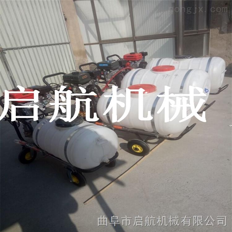 沈阳农药水稻喷药机 手推拉管喷雾器 果树手推喷雾器价格