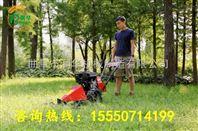 双轮割草机 园林绿化草坪机 草坪专用修剪机