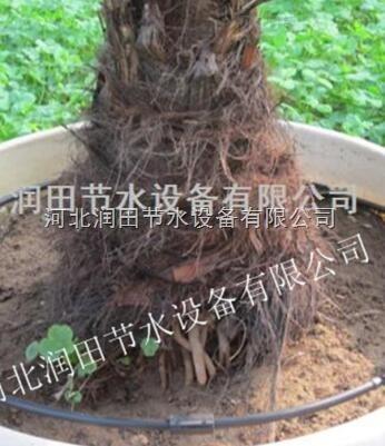 湖南观赏果树灌溉可调滴头|小管出流滴灌系统