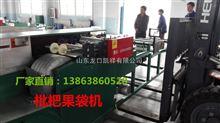 GDJ-D-P1浙江枇杷果袋机