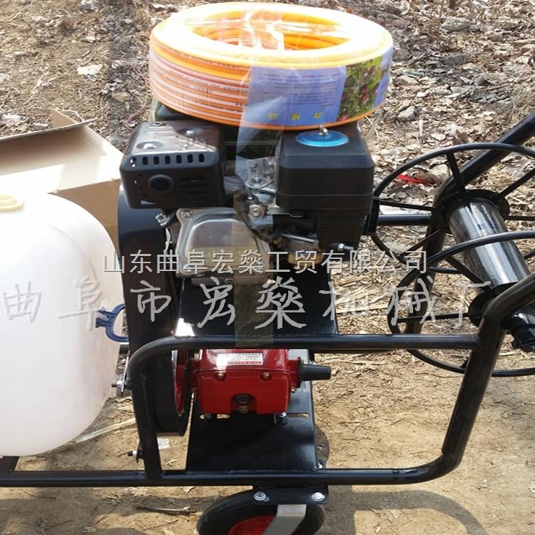 象山县手动汽油喷雾机 20米拉杆高压汽油喷雾器