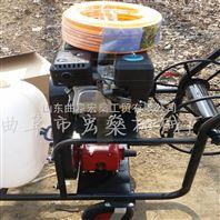 高压汽油喷雾器 农田果园打药喷雾机