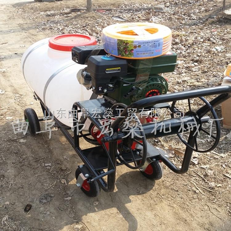 HS-东北苞米田地打药喷雾机 农用高压汽油喷雾器