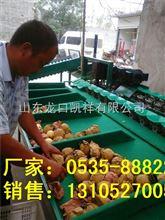XGJ-DN陕西--猕猴桃分级机,分选猕猴桃个头大小的机器选果机