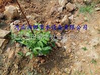 供应江西上饶市优质小管出流 精品灌溉PE管