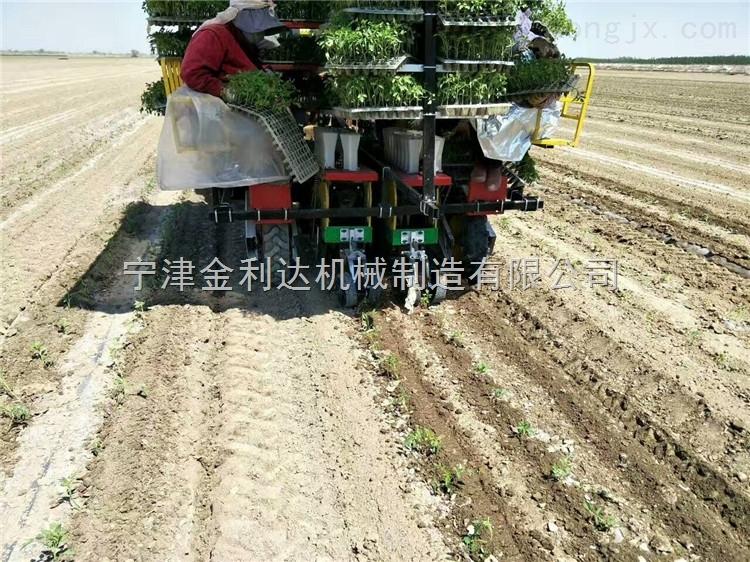 移栽机西红柿移栽机适合新疆的西红柿移栽机山东田耐尔