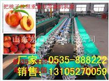 XGJ-T水蜜桃分选机--分选水蜜桃好选果机
