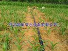 齐全可定制山西喷灌带柔韧性好耐磨 绛县微喷带农业灌溉好帮手