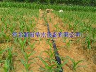 山西喷灌带柔韧性好耐磨 绛县微喷带农业灌溉好帮手