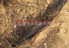 齐全山西果树滴灌|滴水毛管PE管|小管出流系统