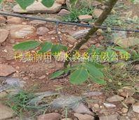会同县水肥一体化果树滴灌 湖南压力补偿式滴头设备优