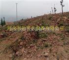 河北石家庄湖南水肥一体化灌溉推广 溆浦县果树小管出流效果优