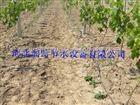 多种滴灌管厂家设备 河北农田滴水管水肥一体化