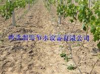 滴灌管厂家设备 河北农田滴水管水肥一体化