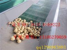 XGJ-WS微薯大小不伤果分选微薯 微薯分级机 振动式分选选果机