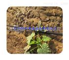 多种河北滴灌管质优价廉 蔬菜滴灌 膜下滴灌产品