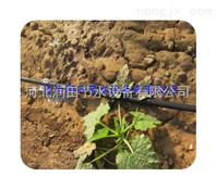 河北滴灌管质优价廉 蔬菜滴灌 膜下滴灌产品