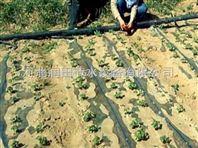 河南滴灌带厂家生产  稳流器滴灌毛管