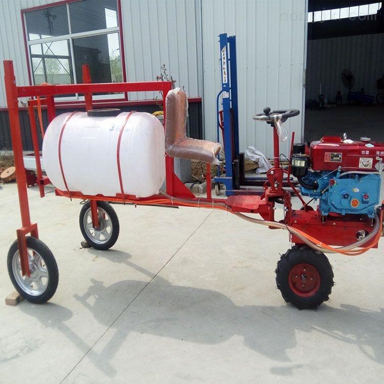 自走式三轮车打药机 座驾式玉米棉花草坪杀虫车载式喷雾器厂家