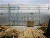 大型定制木材烘干房全套价格