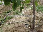 齐全绵阳市滴灌厂家可定制 四川果树滴灌设备值得购买
