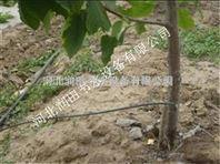 鹿邑县滴灌毛管滴水均匀 河南果树滴灌准确高效灌溉