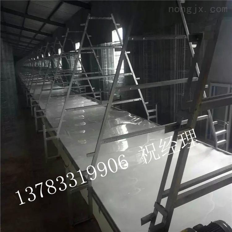 HS-7801-鸡舍用履带清粪机皮带清粪传送带清粪机 zui新清粪技术