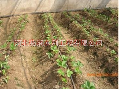 优质大棚滴灌带陕西滴灌带价格低质量好