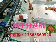 XGJ-T江苏新款桃子选果机