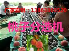 XGJ-T江苏桃子分选机-*的桃子选果设备江苏桃子分选机-*的桃子选果设备