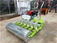 蔬菜基地香菜生菜播种机 小颗粒种植精播机