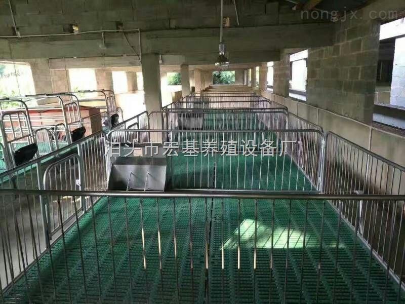 养猪设备厂家批发保育床高培产仔床设备