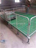 双体小猪保育床养猪设备厂家冯平供应