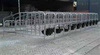 养猪设备厂家长期供应母猪保胎栏 育肥栏
